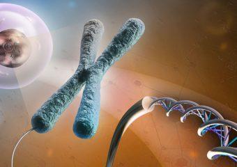بخش ژنتیک مولکولی