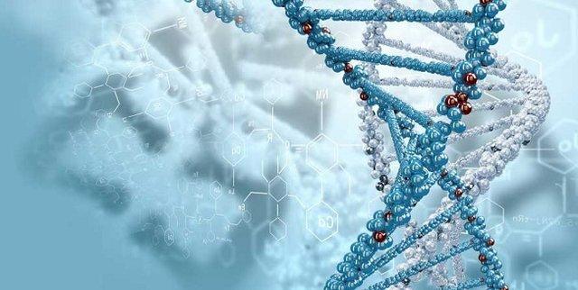 تشخیص هویت ژنتیکی