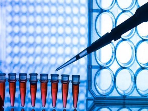 روش های تشخیصی ژنتیکی مولکولی رایج کدامند؟