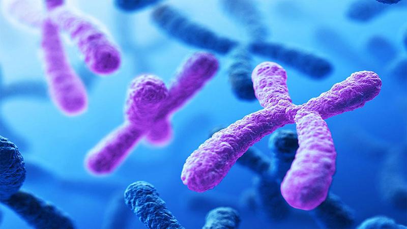 بهترین آزمایشگاه ژنتیک اصفهان | آزمایش کاریوتیپ