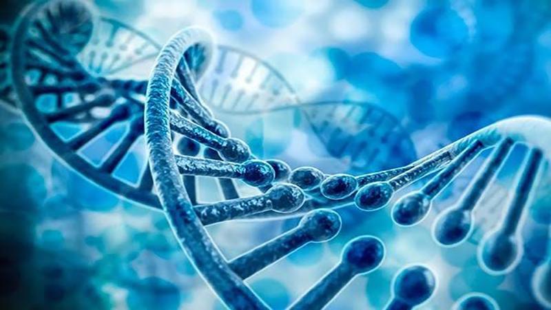 بهترین آزمایشگاه ژنتیک اصفهان | ازدواج فامیلی و بیماری های ژنتیکی