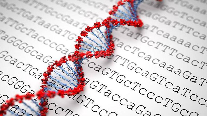 ژنوم | تعیین توالی کل اگزوم