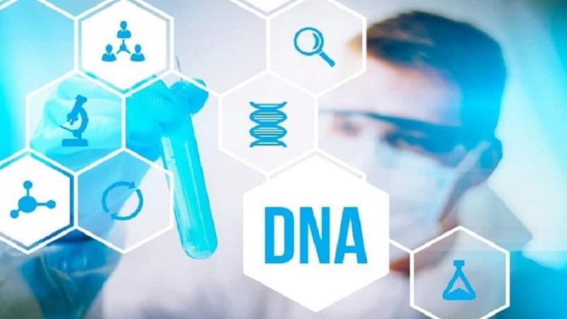 مفهوم اپی ژنتیک چیست؟ | آزمایشگاه ژنتیک اصفهان